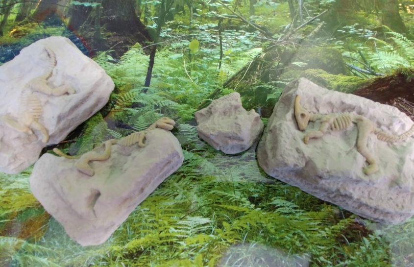 Mali paleontolodzy, czyli Myszki na tropie dinozaurów