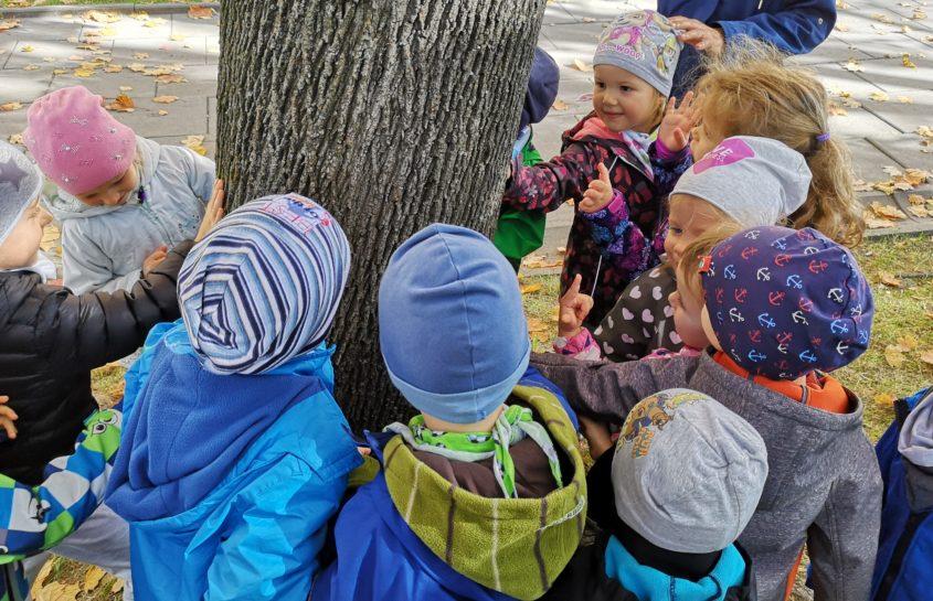 Wspomnienie z dnia Drzewa u Niedźwiadków
